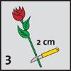 floralife-3